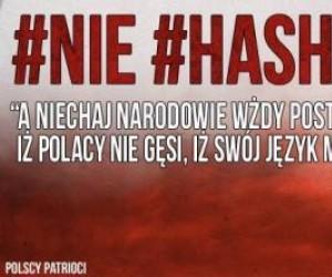 Polacy nie gęsi!
