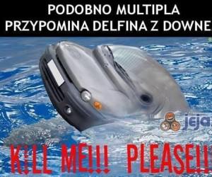 Ej, Multipla, co ty wyrabiasz?