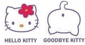 Goodbye Kitty!