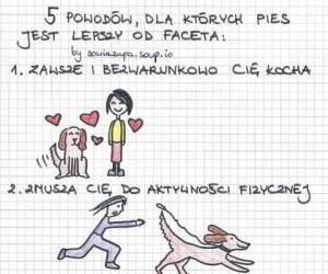 Dlaczego pies jest lepszy od faceta