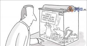 Niebezpieczne testy na zwierzętach