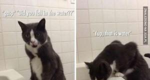 Wpadłaś do wody?