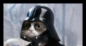Tard Vader