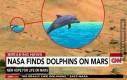 NASA znalala delfiny na Marsie!