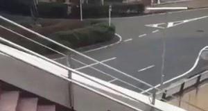 Zapomniał, że ma skrzydła