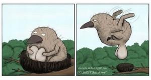Ptaszek w gnieździe