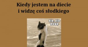Dylematy podczas diety