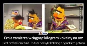 Ernie zamierza wciągnąć kilogram kokainy na raz