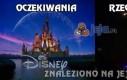 Disney - oczekiwania vs rzeczywistość