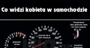 Co widzi kobieta w samochodzie