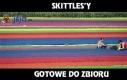 Skittles'y
