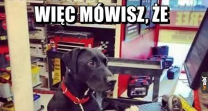 Janusz mechanik