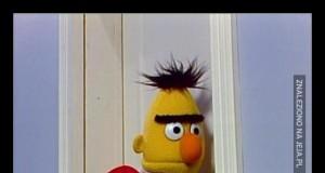 Bert usłyszał dziwne jęki dochodzące zza drzwi