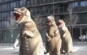 Dinozaury tańczą, tańczą, tańczą!