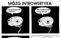 Introwertycy mają przekichane