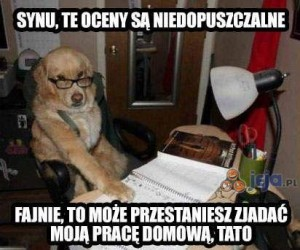 Synu...