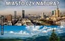 Miasto czy natura?