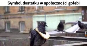 Majętny ptaszek