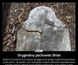 Oryginalny pechowiec Brian