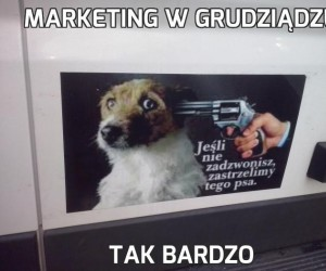 Marketing w Grudziądzu