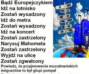 Logika UE