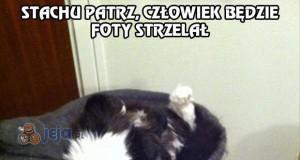 """Moje koty są """"szczególne"""""""