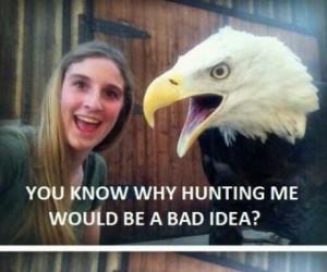 Dlaczego polowanie na orła to zły pomysł?