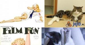 Koty naśladują Pin-up girls