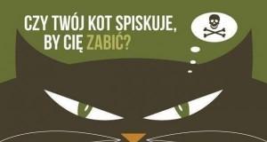 Masz kota? Uważaj...