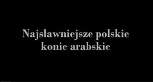 To w końcu polskie czy arabskie?