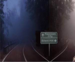 W którą stronę jedziesz?