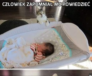 Że jak?! Nowe zwierzątko bez mojej wiedzy?!