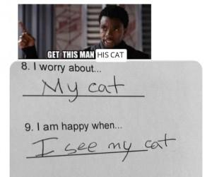 Oddajcie mu kotka