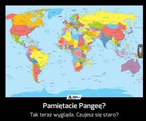 Pamiętacie Pangeę?