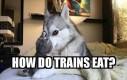 Jak jedzą pociągi?