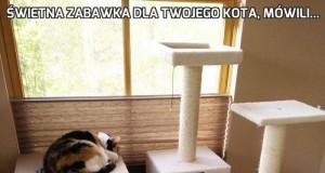 Świetna zabawka dla Twojego kota, mówili...