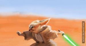 Fenek Jedi