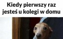 Pierwszy raz w domu kolegi