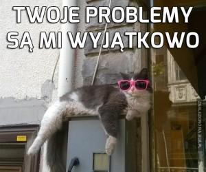 Chciałbym chcieć pomóc, ale jestem kotem