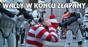 Wally w końcu złapany