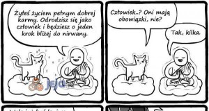 Dlaczego koty mają dziewięć żyć?