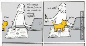 Takiego raportu jeszcze nie było!