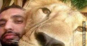 Selfie z lwem