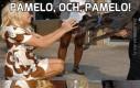 Pamelo, och, Pamelo!
