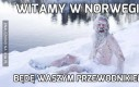 Witamy w Norwegii