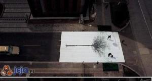 Street Art - Drzewo w mieście