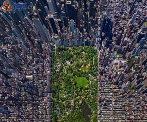 Central Park - widok z góry