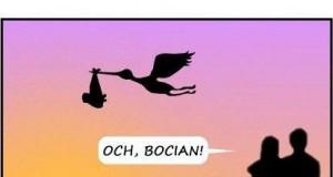 Och, bocian!