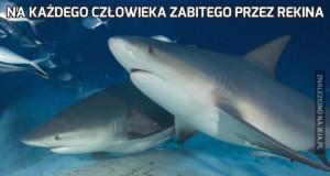 Na każdego człowieka zabitego przez rekina