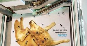 Naprawdę kreatywne reklamy
